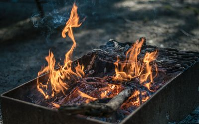 Campfire Recipes: Cooking Chicken in a Foil Packet Over a Campfire